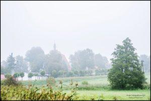 Mglisty plener nad rzeką Samą i stawkami, Kaźmierz - fot. Tomasz Koryl