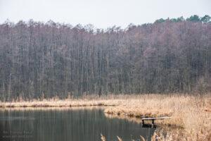 Jezioro Kłuchówiec Chojno