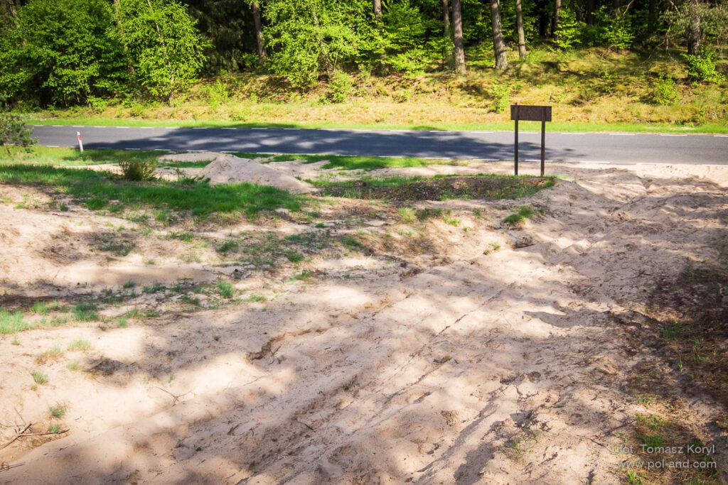 Użytek ekologiczny Wrzosowe Wydmy gmina Wronki